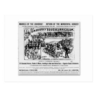 Postal Anuncio de Equescurriculum de D.M. Bristol
