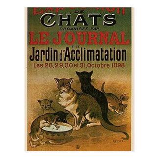 Postal Anuncio francés del vintage - gatos