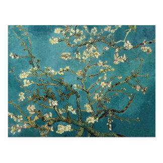 Postal Árbol de almendra floreciente - Van Gogh