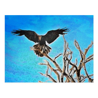 Postal Árbol del cuervo