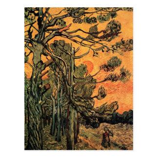 Postal Árboles de pino en la puesta del sol de Vincent