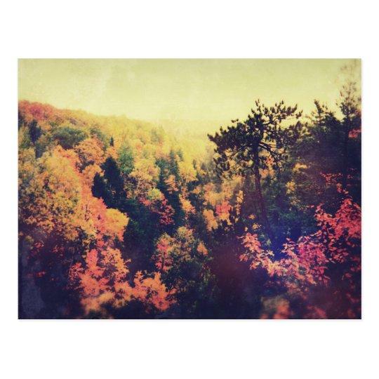 Postal Árboles del otoño de Michigan del vintage