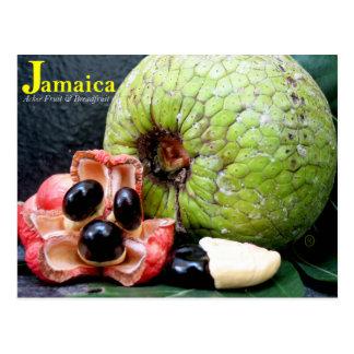 Postal Árboles del pan y fruta jamaicanos 2k17 del Ackee