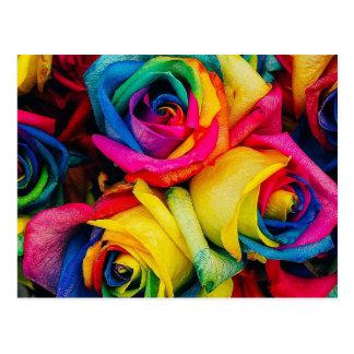 Postal Arco iris color de rosa