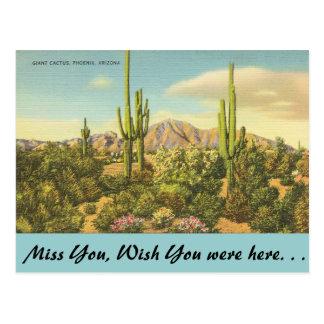 Postal Arizona, cactus gigante