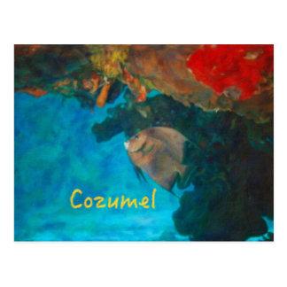 Postal Arrecife de coral de Cozumel