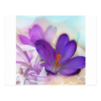 Postal Arreglo floral del azafrán y del lirio de los