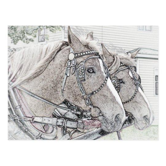 Postal Arte 2010 3 del caballo