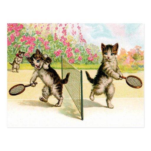 Postal: Arte del vintage de los gatitos del bádmin