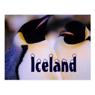 Postal ártica de los pingüinos de Islandia
