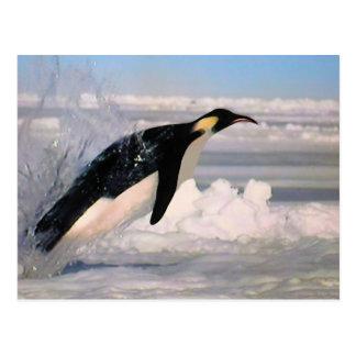 Postal ártica y antártica del emperador del