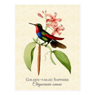 Postal atada de oro del arte del colibrí del
