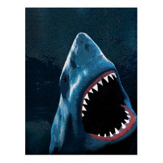 Postal Ataque del tiburón