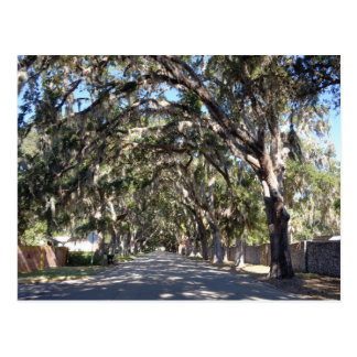 Postal avenida famosa St Augustine la Florida los