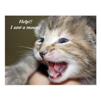 Postal ¡Ayuda!!   ¡Vi un ratón!