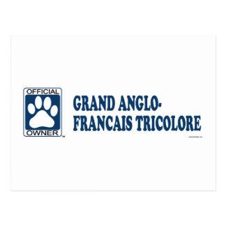 Postal Azul anglo-Francais magnífico de Tricolore