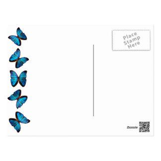 Postal azul brillante de la mariposa de monarca