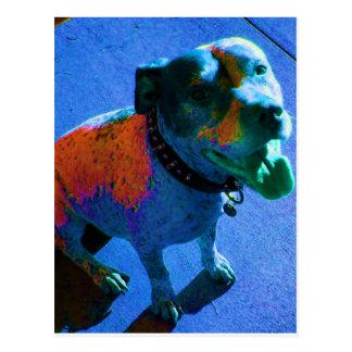 Postal azul de risa del perro
