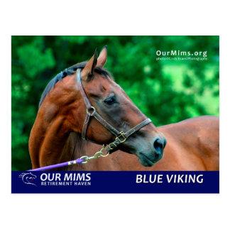 Postal azul de Viking
