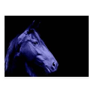 Postal azul del diseño del caballo