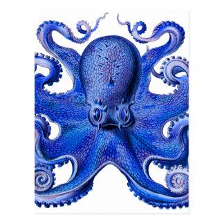 Postal Azul del pulpo de Haeckel