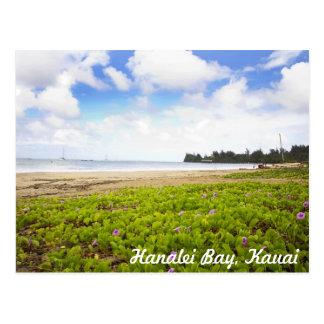 Postal Bahía de Hanalei, escena tropical de la playa de