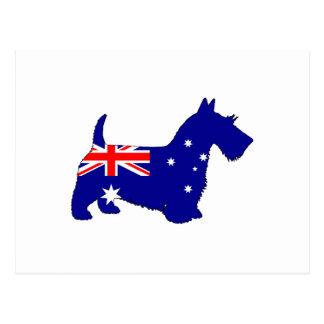 Postal Bandera australiana - escocés Terrier