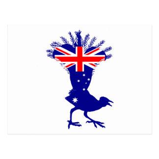 Postal Bandera australiana - Lyrebird