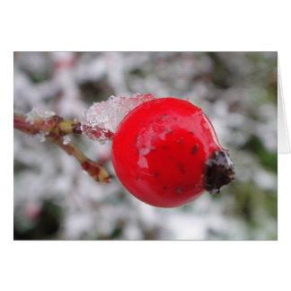 Postal baya del espino con cristales de hielo, en  tarjeta de felicitación