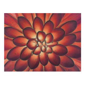 Postal Bella arte floral abstracta moderna de los pétalos