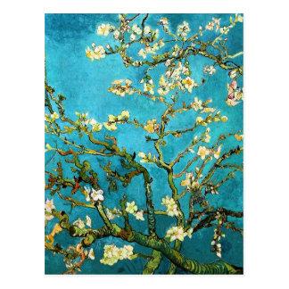 Postal Bella arte floreciente de Van Gogh del árbol de
