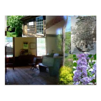Postal Belleza de primavera de Vermont