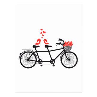 Postal bicicleta en tándem con los pájaros lindos del