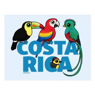 Postal Birdorable Costa Rica