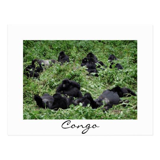 Postal blanca de la frontera de Congo del grupo