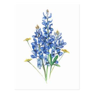 Postal Bluebonnets y Wildflowers