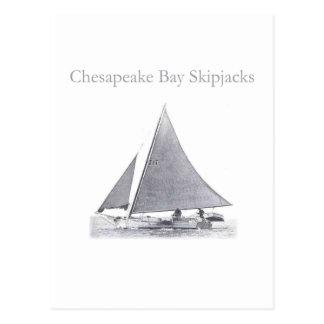Postal Bonitos de la bahía de Chesapeake