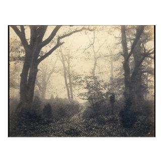Postal Bosque de Fontainebleau