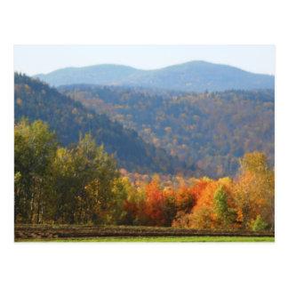 Postal Bosque de las montañas del otoño del Adirondacks