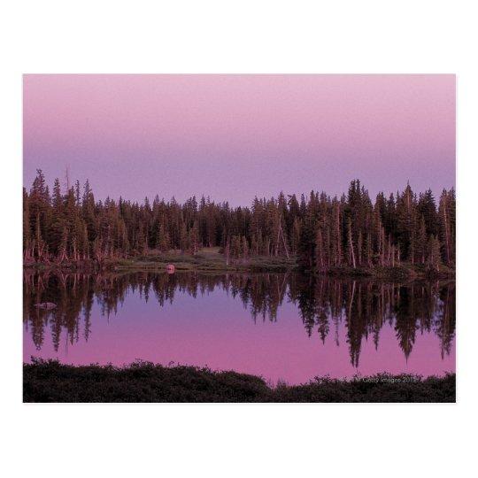 Postal Bosque del Estado del arco de la medicina, Wyoming