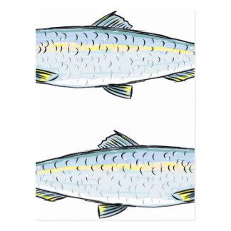 Postal Bosquejo de los pescados de los arenques