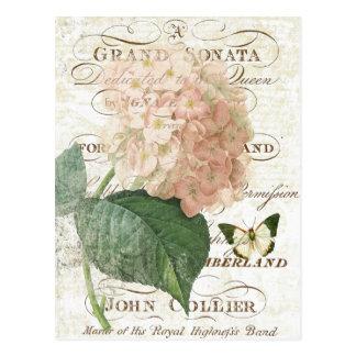 Postal botánica francesa del hydrangea del vintage