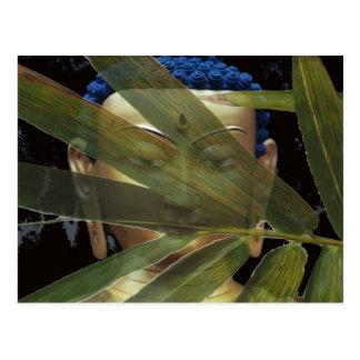 Postal Buda de bambú