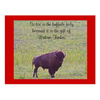 Postal Búfalo en las tierras de Lakota