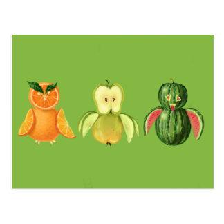 Postal Búhos de la fruta