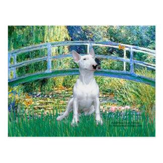 Postal Bull terrier 1 - Puente