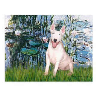 Postal Bull terrier 4 - Lirios 1