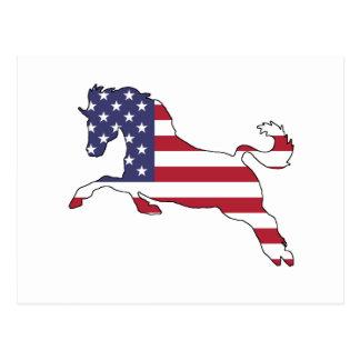 "Postal Caballo ""bandera americana """