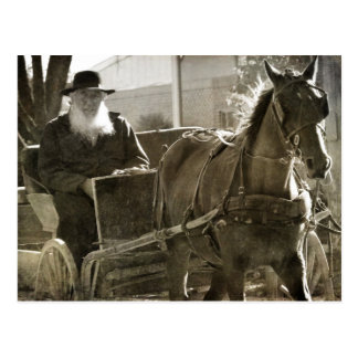 Postal Caballo de Amish que es tonto con la lengua pegada