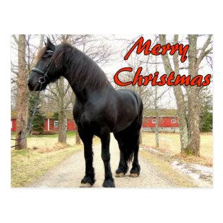 Postal Caballo feliz Christmas.jpg